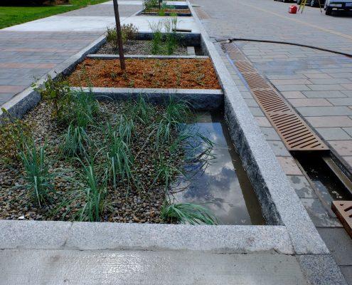 Jardin de pluie rempli d'eau