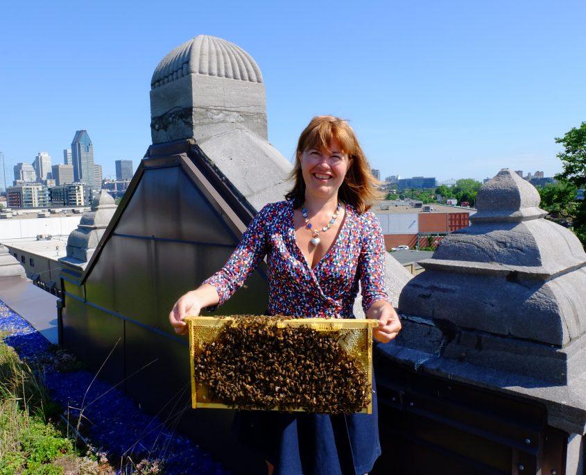 Ruche ALEVEOLE - Juliette et les nouvelles abeilles